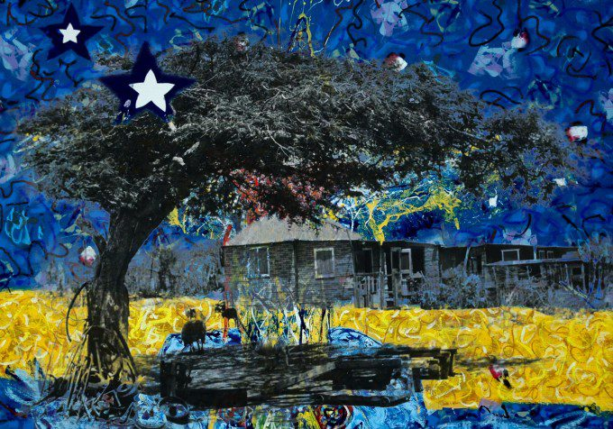 Curacao tree and flag