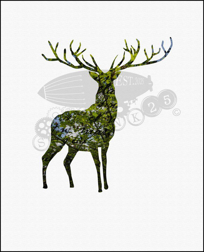 Simplicity - The Stag