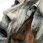 ceramic-sculptures-that-look-like-wood-by-christopher-david-white-4