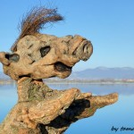 driftwood_art_in_hungary_alf_by_tamas_kanya_by_tom_tom1969-d8go1p6