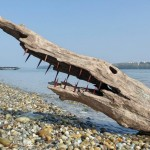 driftwood_art_in_hungary_by_tamas_kanya_by_tom_tom1969-d8kalvl