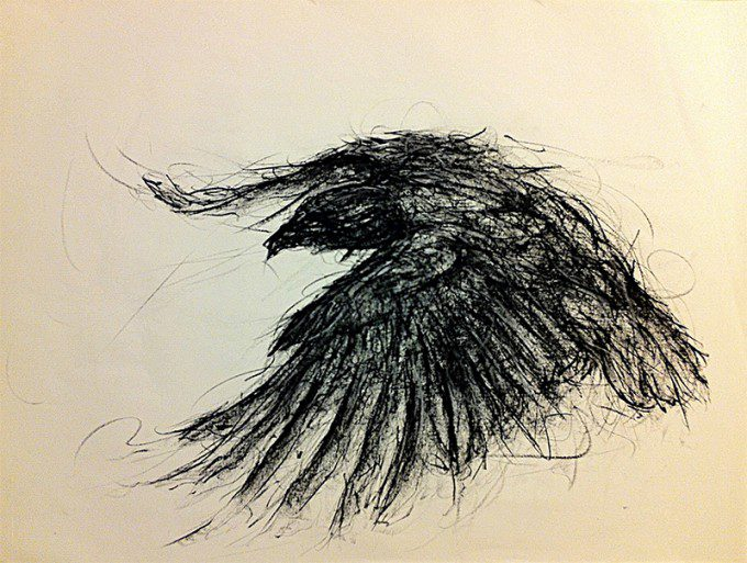 """Crow"" (2014, Charcoal on Paper)"