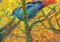 w128-little-bluebird-36x36