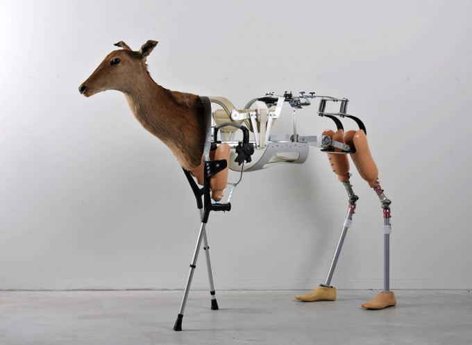 Back To Nature By Prosthesis