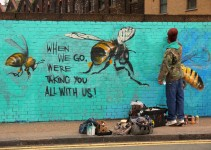 bees-8
