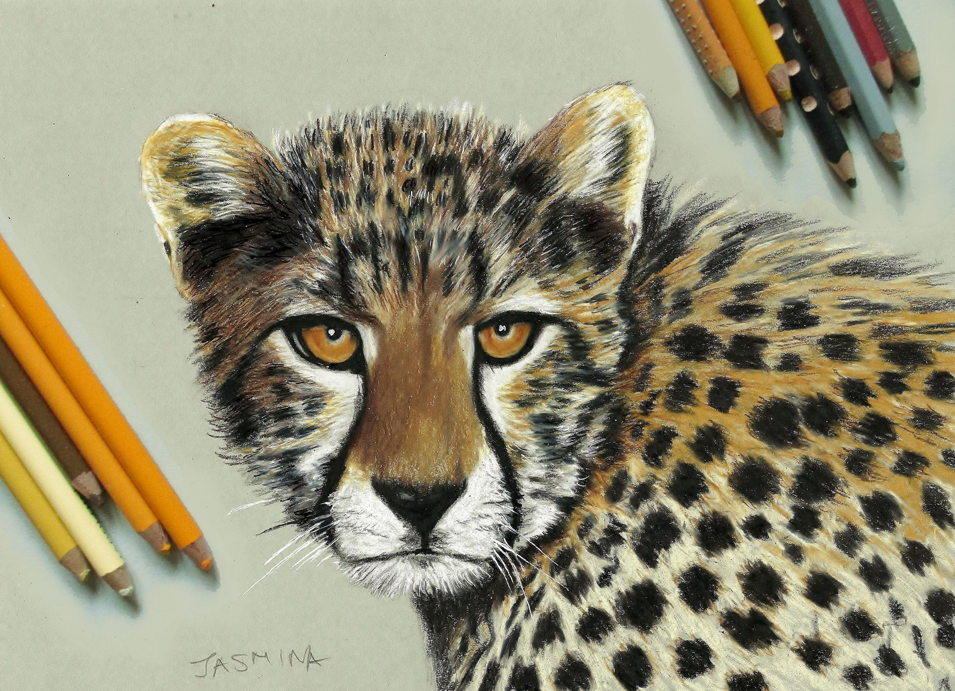 Realistic Drawings and Paintings of Animals by Jasmina ...
