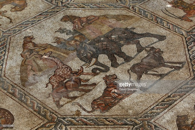 Workers clean the dirt off an ancient Roman mosaic as it is revealed some 13 years after it was first discovered in the ruins of a 4th century AD building, on July 1, 2009 in Lod in central Israel. The beautiful 1,700 year old mosaic floor, which is regarded as one of the most magnificent and largest ever revealed in Israel, was first uncovered in 1996 during a project to upgrade the city's sewage system. The well-preserved mosaic covers an area of about 180 square meters and is composed of coloured carpets that depict in detail animals, birds, fish, a variety of flora and the sailing and merchant ships that were used at the time.