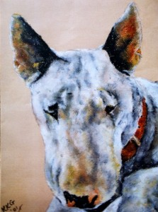 Pet portrait of an English bull terrier - soft pastels on textured paper - by Kelly Goss