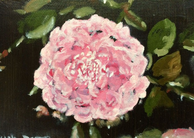 Rose Blusch Damask - Original Oil Painting on Canvas by Aase Birkhaug- Art