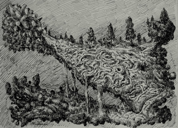 A knot -Description : A twisted earth. Since I was young, I love doodle; also with a simple black pan, we can simple introduce a very different world and freely add or mix anything coming across my mind. - Black pen on paper - Size : 20 x 15 cm - Oct.2015