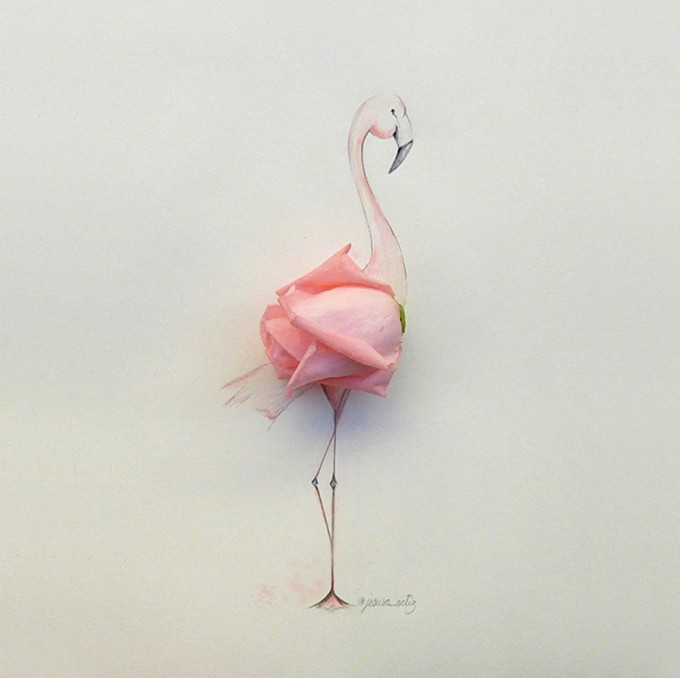 Jesuso-Ortiz-Art-Illustration-Flamingo