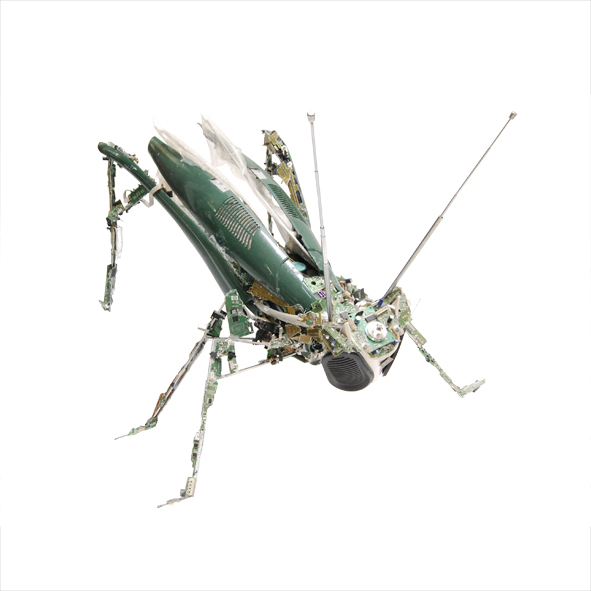 WHAT_WEEE_ARE_GriffinMetals_Grasshopper_Square_web