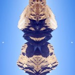 real pictur of the Dolomites mirrored