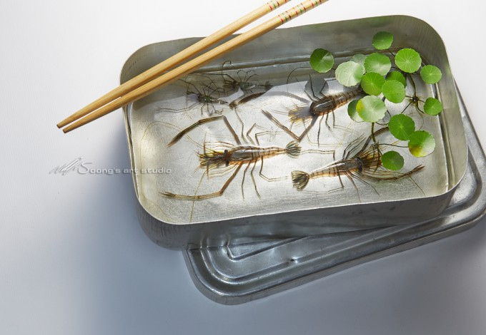 Lunch box of shrimp (Acrylic on Resin)