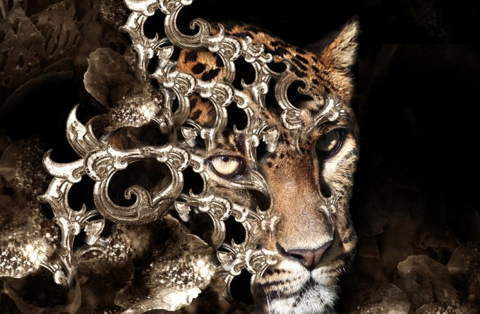 The Leopard by Diva 1
