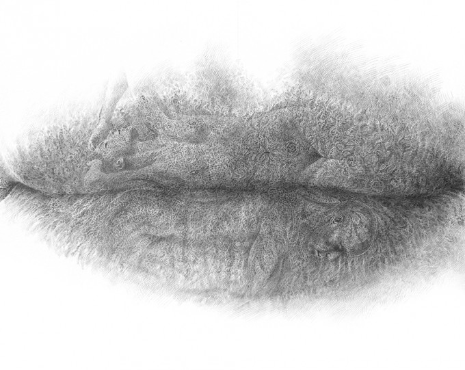 "Lips Series 10.15 - Unity silverpoint on paper, 26.0"" x 39.8"",Lips Series by Christo Dagorov #artpeople"