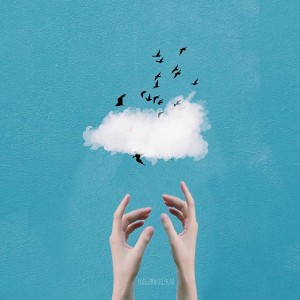 Cloud and flying bird