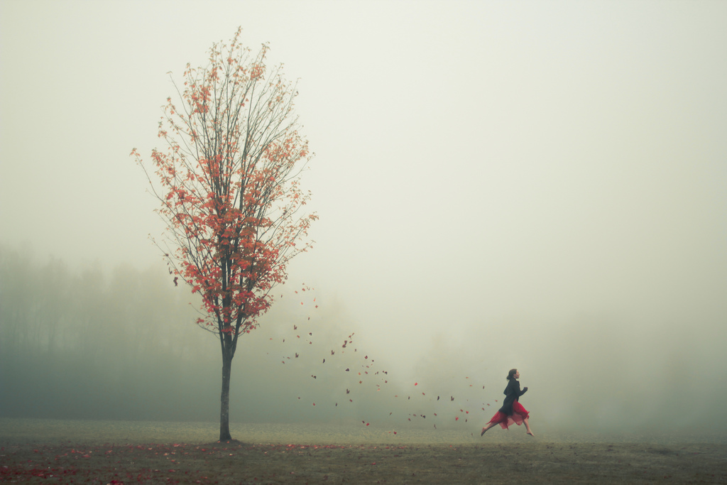 Elizabeth Gadd photographer with a calm demeanour #artpeople