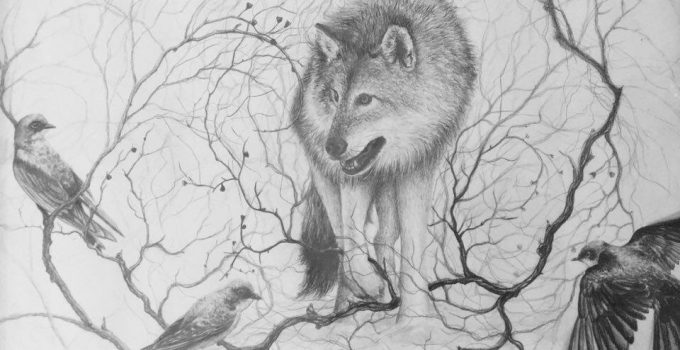 The Grey Wolf and Tree Swallows