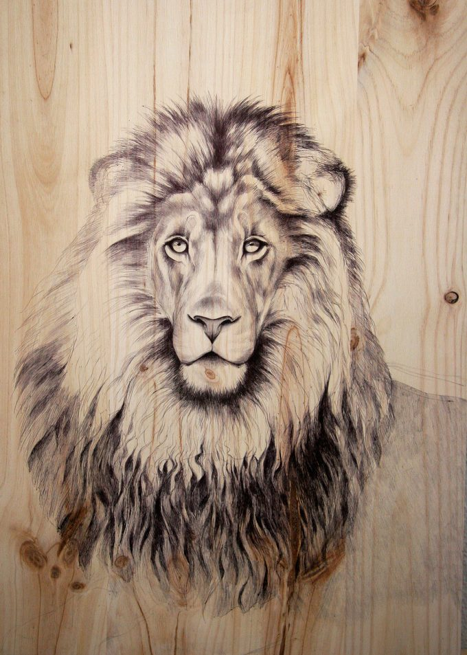 León,Martina Billi - Drawings on wood