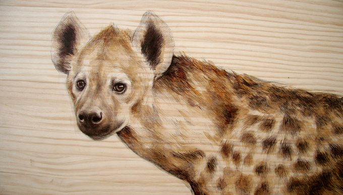 hyena,Martina Billi - Drawings on wood