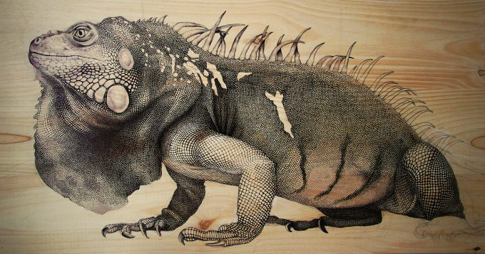 iguana,Martina Billi - Drawings on wood