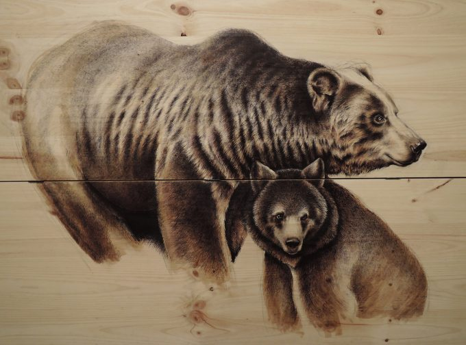 osos,Martina Billi - Drawings on wood