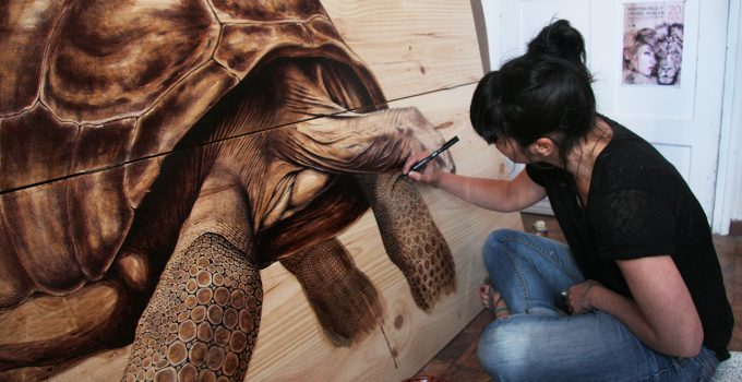 tortuga2,Martina Billi - Drawings on wood