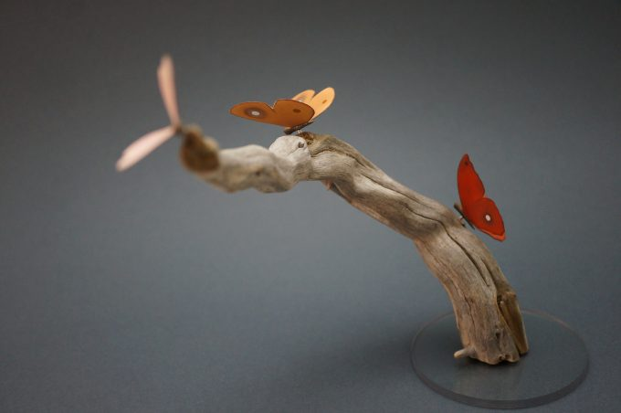 Butterflies sitting on Driftwood