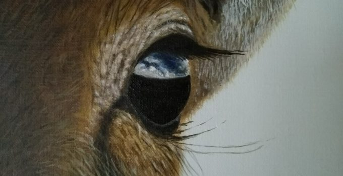 Antelope painting, close up