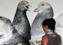 Stunning Large-Scale Pigeons Murals by Adele Renault