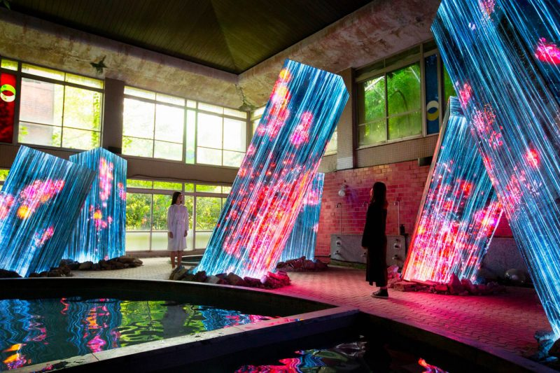 Flowers Appear to Blossom and Wither in a Responsive Installation by teamLab