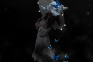 Manipulation photo butterflies cloud