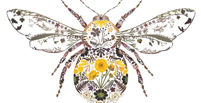 Delicate Fauna Compositions by Artist Helen Ahpornsiri